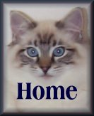 click here to return to Villaroyal Ragdolls home page